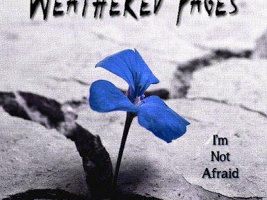 I'm Not Afraid 2