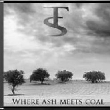 Where Ash Meets Coal