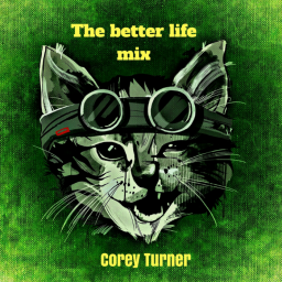 The better life mix