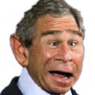 Bush Confesses