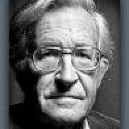 Chomsky Saved my Life
