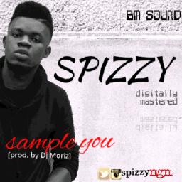 spizzy sample you
